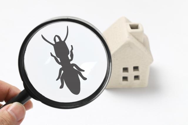 住友不動産、防蟻、シロアリ対策
